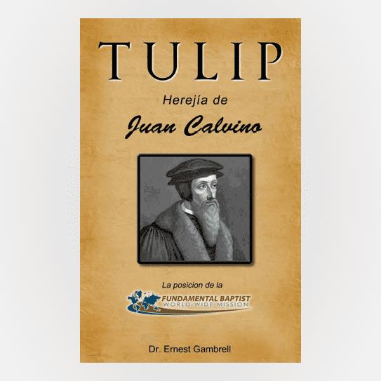 TULIP Spanish