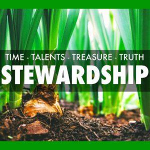 STEWARDSHIP (4 Lessons)