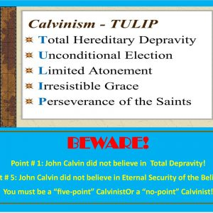 Sunday School Lessons: CALVINISM (6 Lessons)