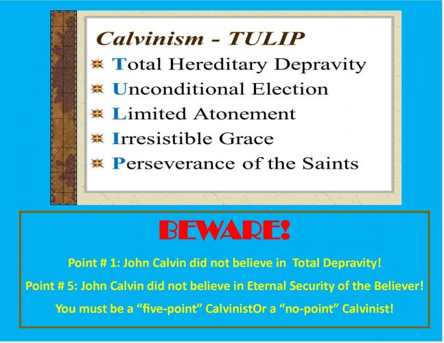 CALVINISM (6 Lessons)
