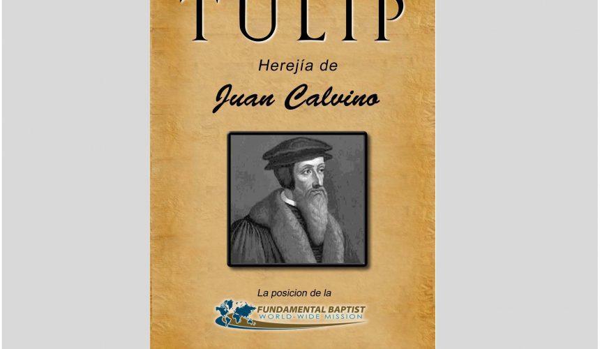 Libro: La Herejia TULIP