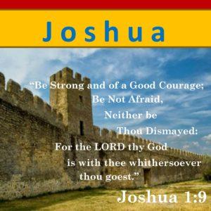 JOSHUA    (20 Lessons)